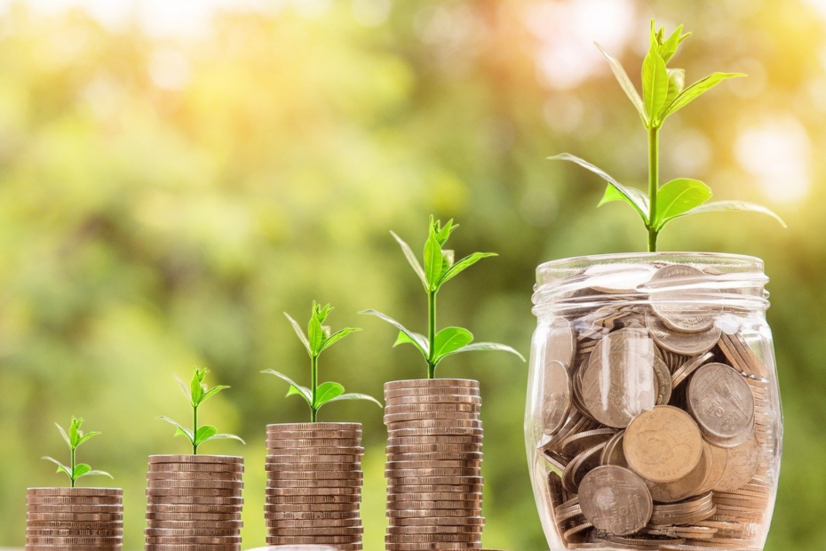 Tips on How to Grow Your Credit